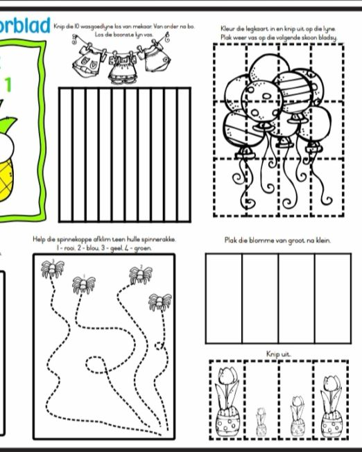 Grade R Activity Book